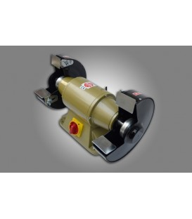 Lider 200 mm Monofaze Zımpara Taş Motoru 220V